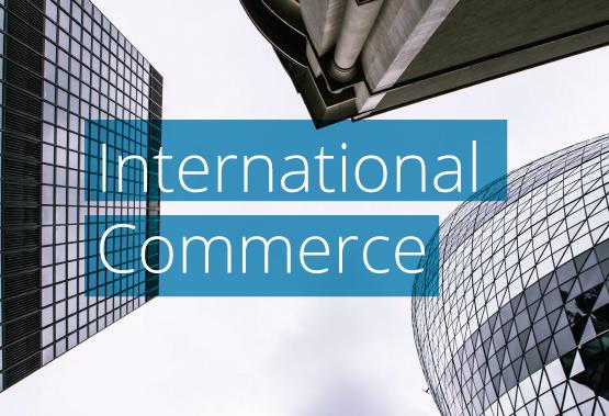 Comercio-Internacional-(Ingles)